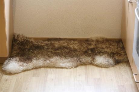 Mon tapis pour chien, une peau de mouton !