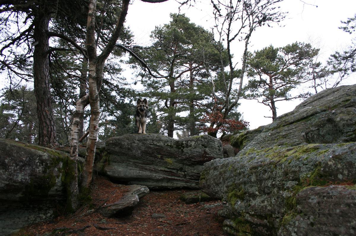 Là c'est moi sur un rocher